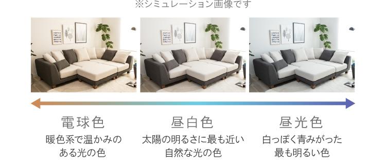 照明の色で変わるソファの色合い